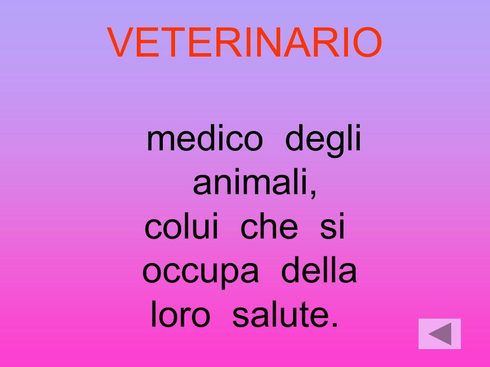 VETERINARIO animali, colui che si occupa della loro salute.