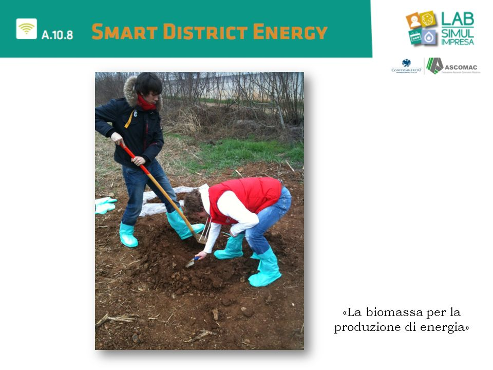 «La biomassa per la produzione di energia»