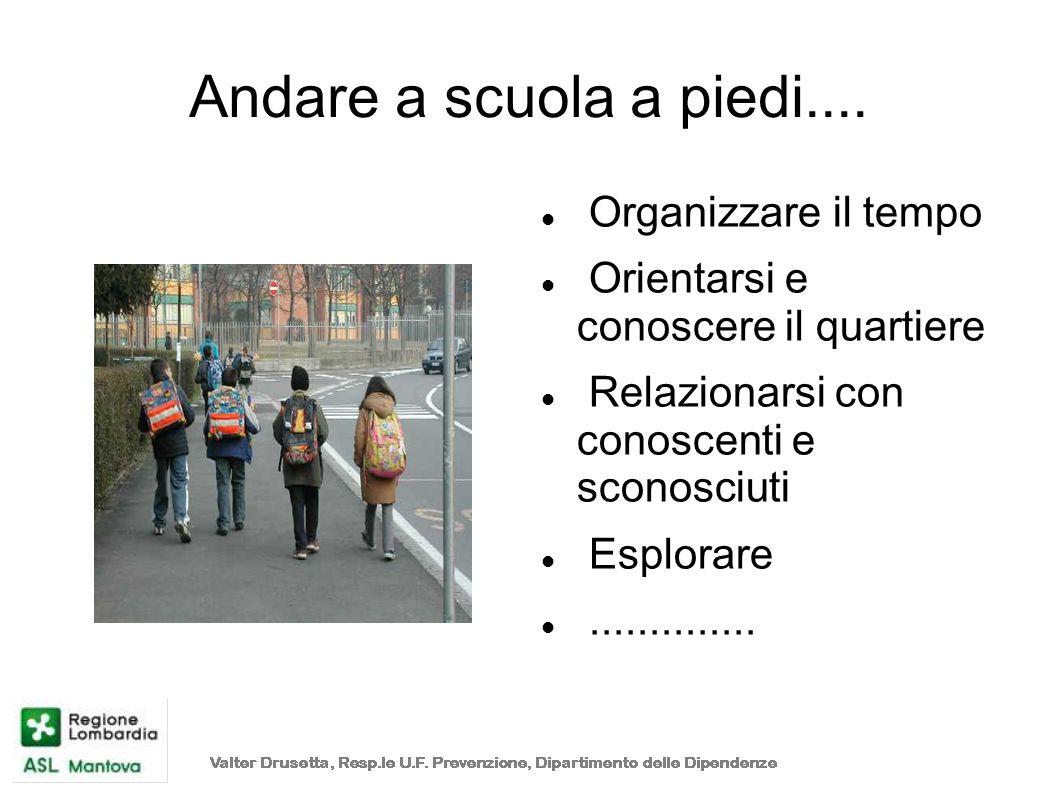 Andare a scuola a piedi.... Organizzare il tempo