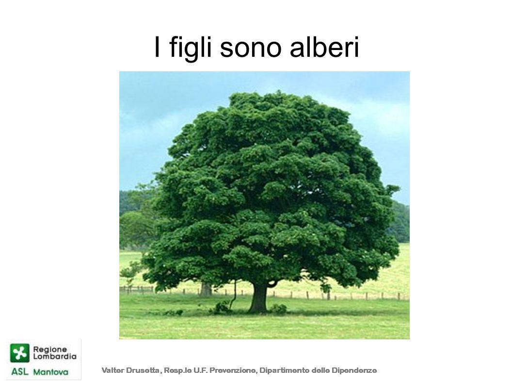 I figli sono alberi