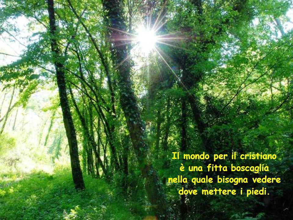 Il mondo per il cristiano è una fitta boscaglia nella quale bisogna vedere dove mettere i piedi.
