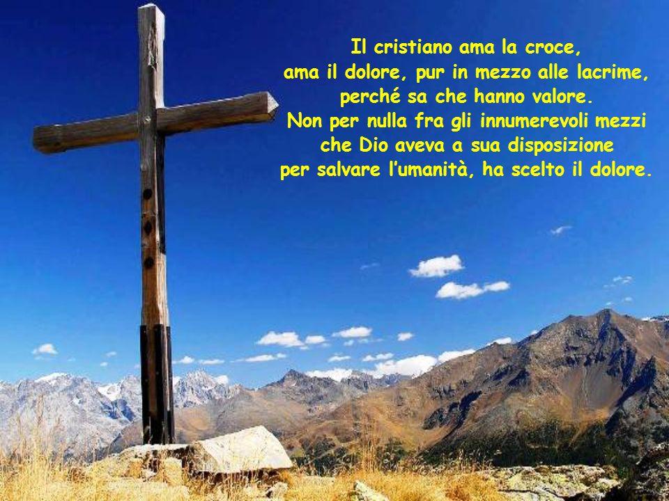 Il cristiano ama la croce, ama il dolore, pur in mezzo alle lacrime, perché sa che hanno valore.