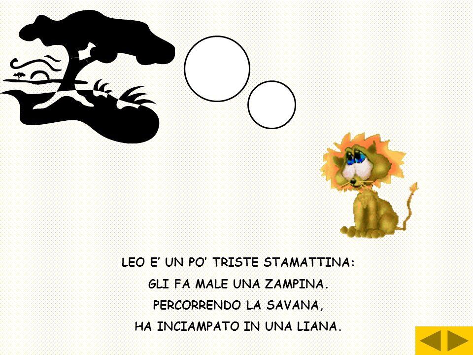 LEO E' UN PO' TRISTE STAMATTINA: HA INCIAMPATO IN UNA LIANA.