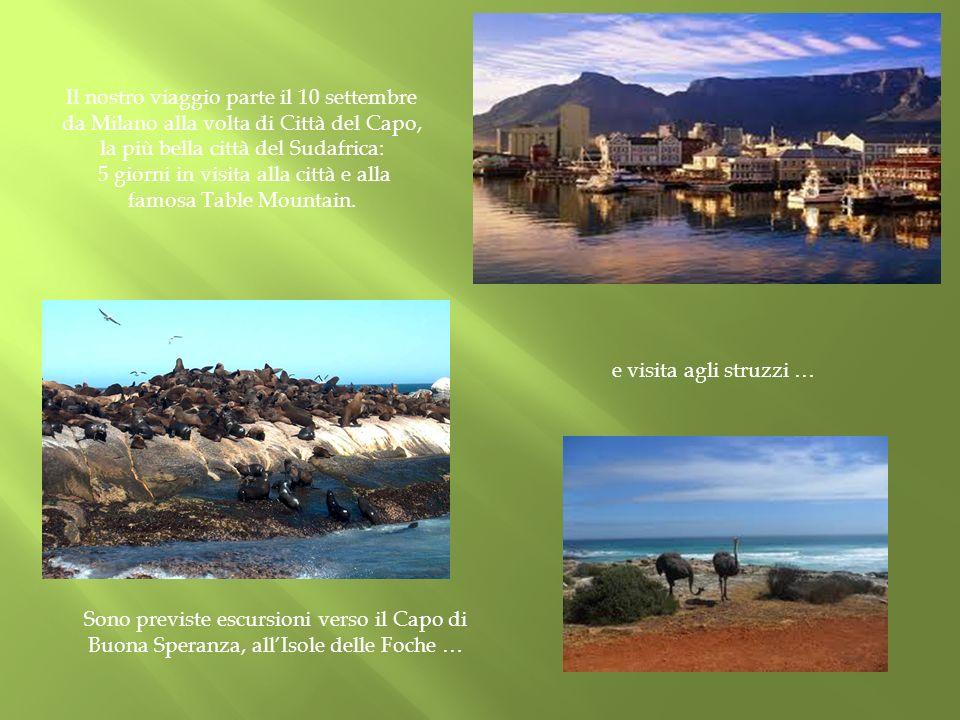 5 giorni in visita alla città e alla famosa Table Mountain.
