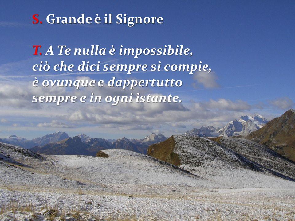 S. Grande è il Signore T. A Te nulla è impossibile, ciò che dici sempre si compie, è ovunque e dappertutto.