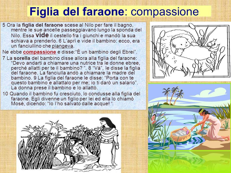 Figlia del faraone: compassione
