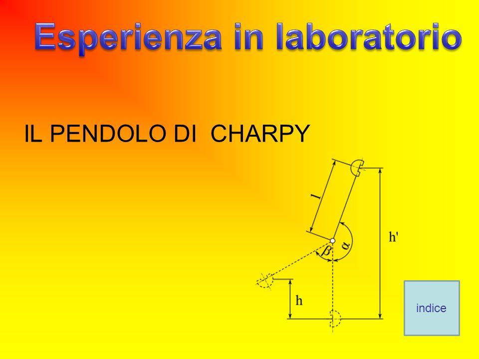 Esperienza in laboratorio