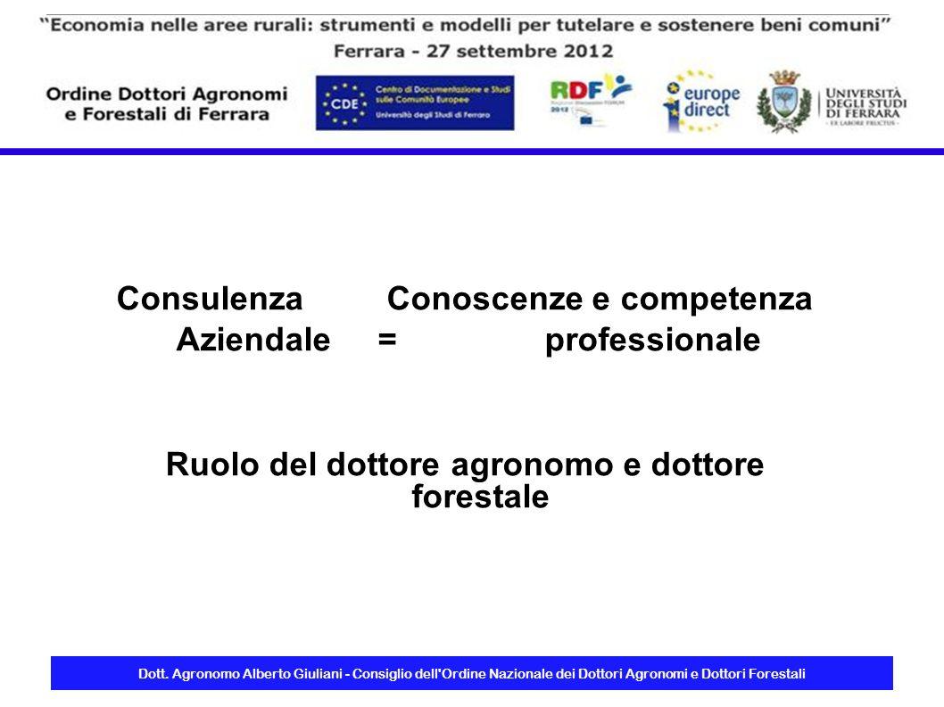 Consulenza Conoscenze e competenza Aziendale = professionale