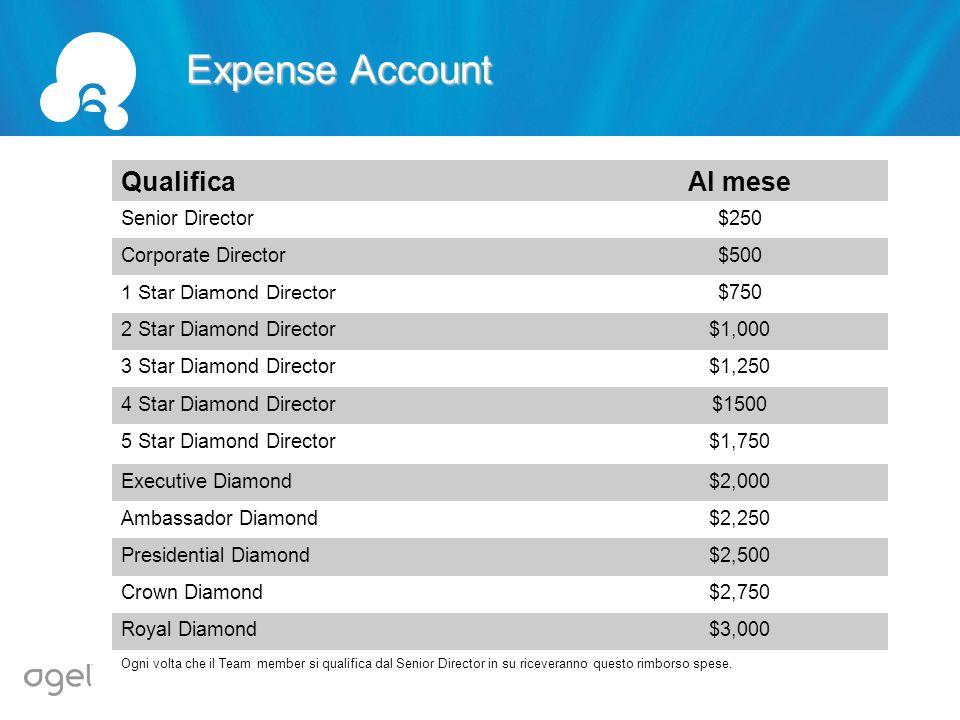 6 Expense Account Qualifica Al mese Senior Director $250