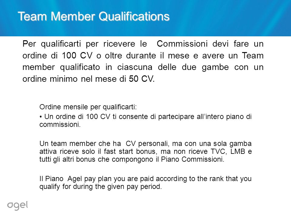 Team Member Qualifications