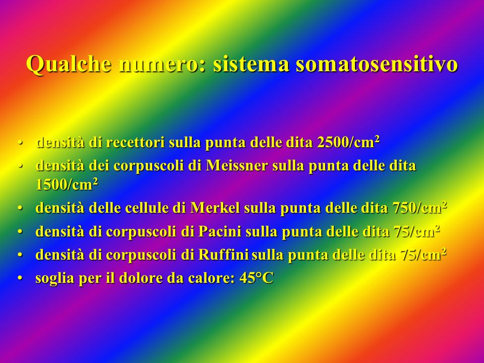 Qualche numero: sistema somatosensitivo