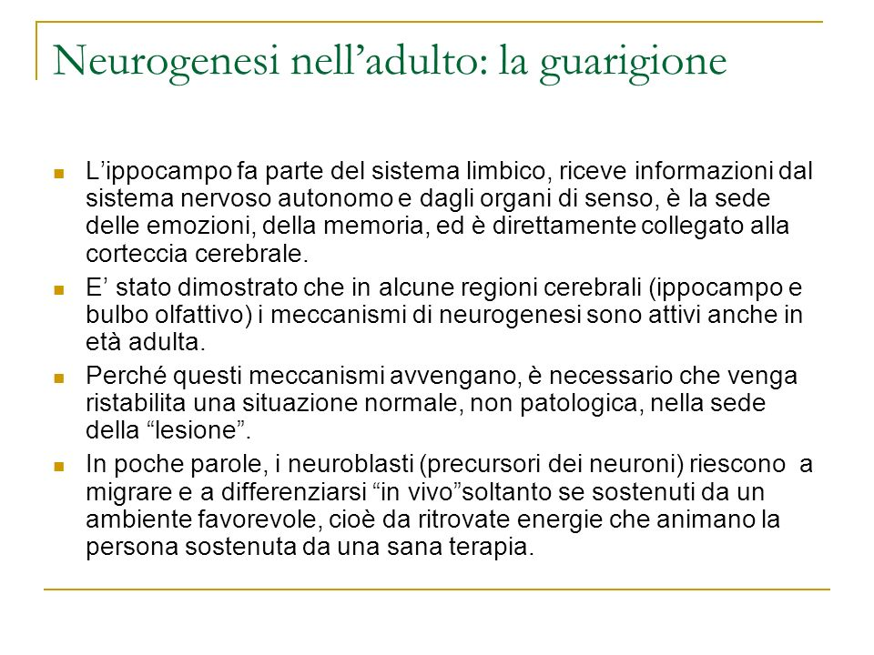 Neurogenesi nell'adulto: la guarigione