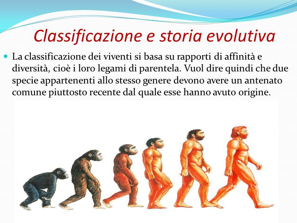 Classificazione e storia evolutiva