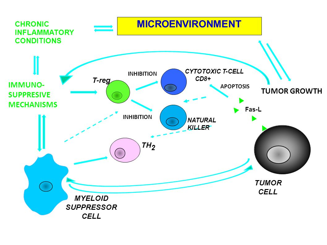MICROENVIRONMENT IMMUNO- SUPPRESIVE TUMOR GROWTH MECHANISMS