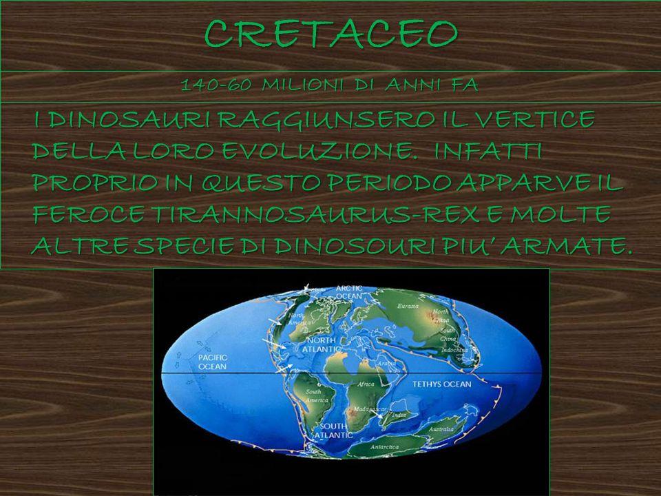 CRETACEO 140-60 MILIONI DI ANNI FA.