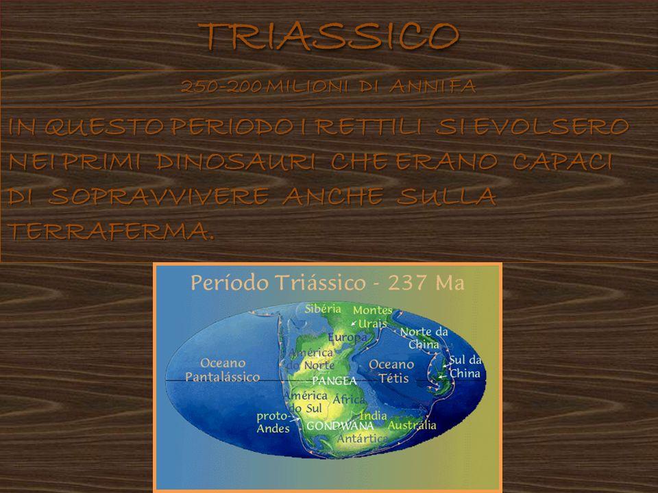 TRIASSICO 250-200 MILIONI DI ANNI FA.
