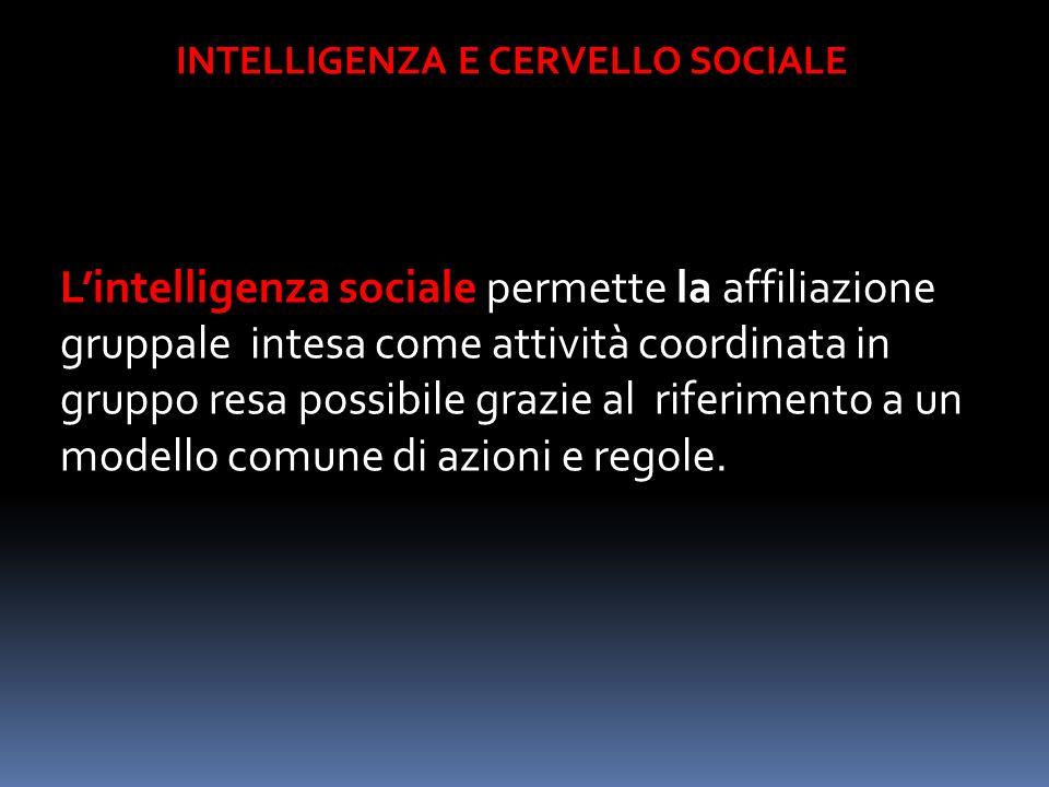 INTELLIGENZA E CERVELLO SOCIALE