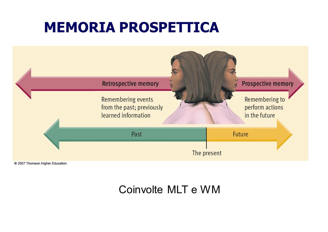MEMORIA PROSPETTICA Coinvolte MLT e WM