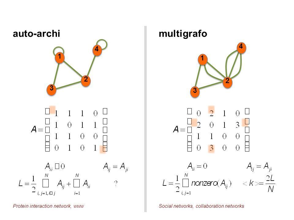 auto-archi multigrafo 4 4 1 1 2 2 3 3 Protein interaction network, www