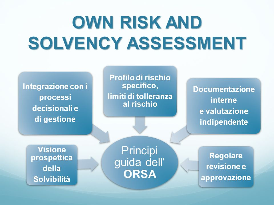 OWN RISK AND SOLVENCY ASSESSMENT