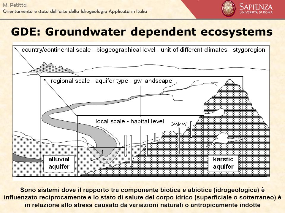GDE: Groundwater dependent ecosystems