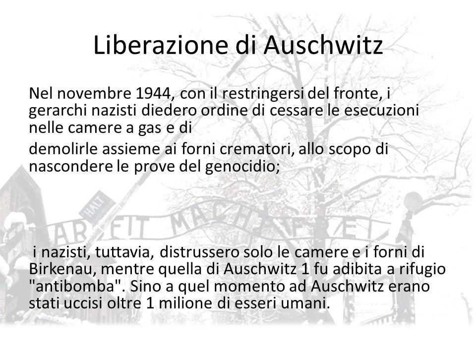 Liberazione di Auschwitz