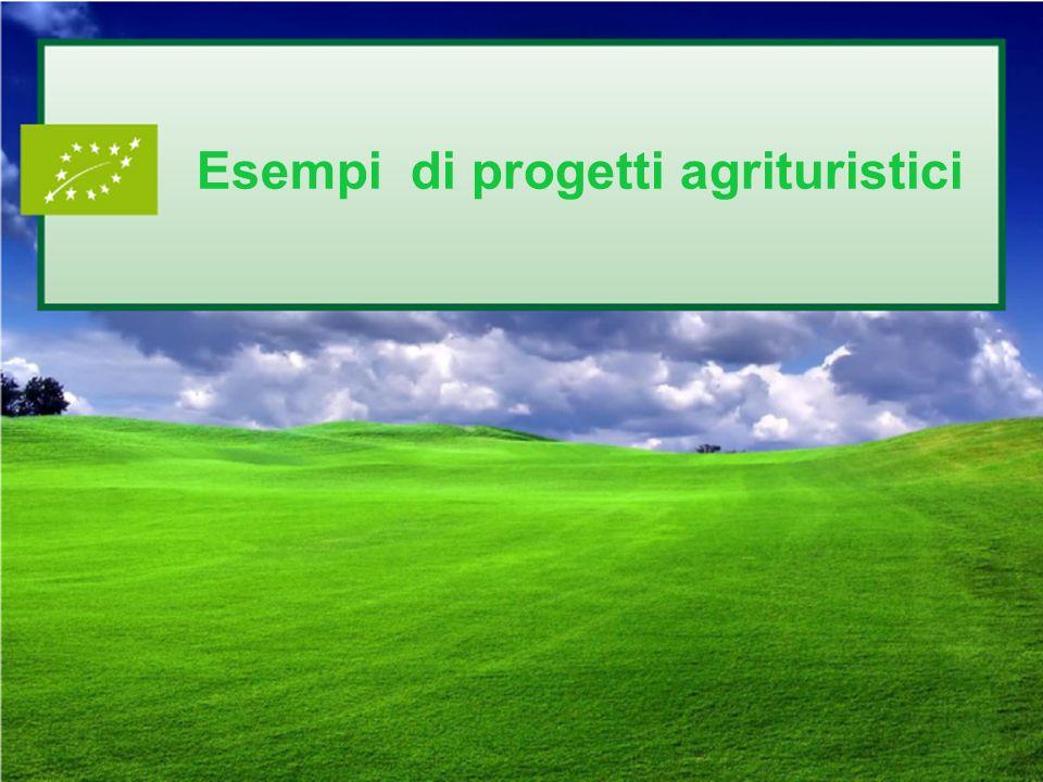 Esempi di progetti agrituristici