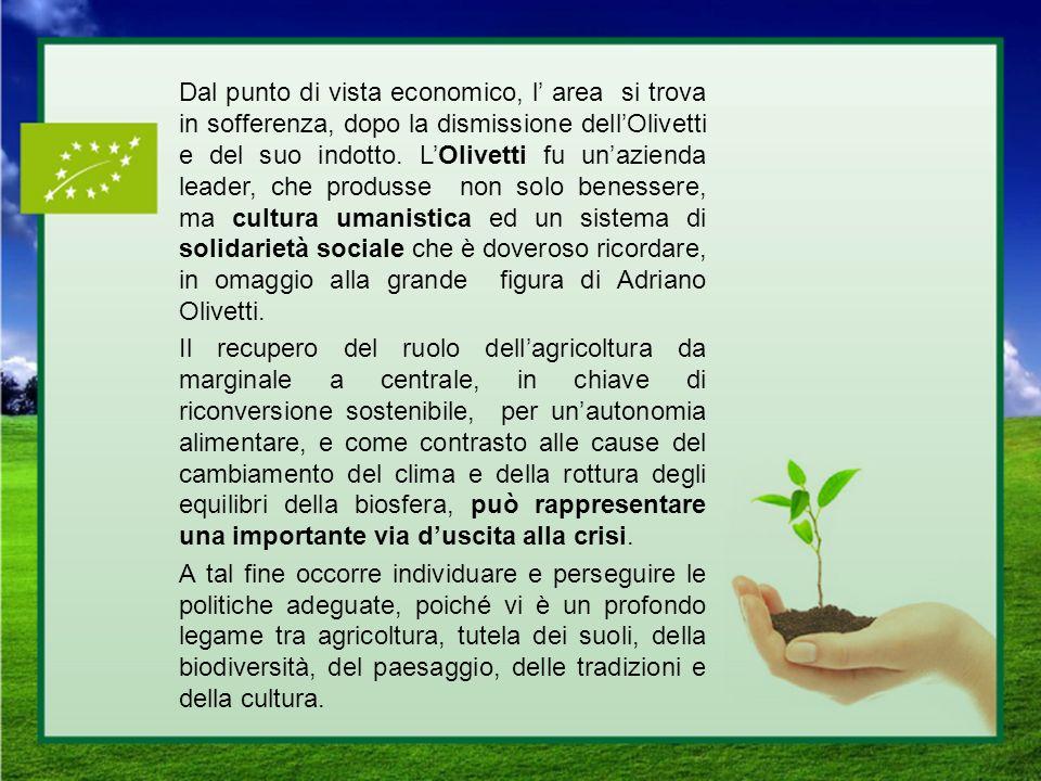Dal punto di vista economico, l' area si trova in sofferenza, dopo la dismissione dell'Olivetti e del suo indotto.