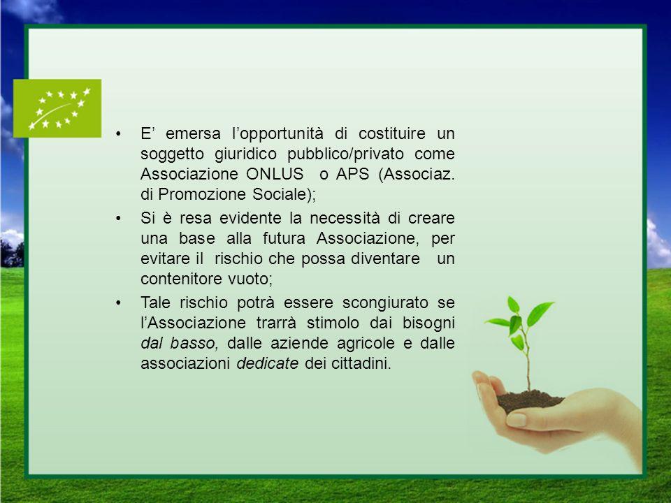 E' emersa l'opportunità di costituire un soggetto giuridico pubblico/privato come Associazione ONLUS o APS (Associaz. di Promozione Sociale);