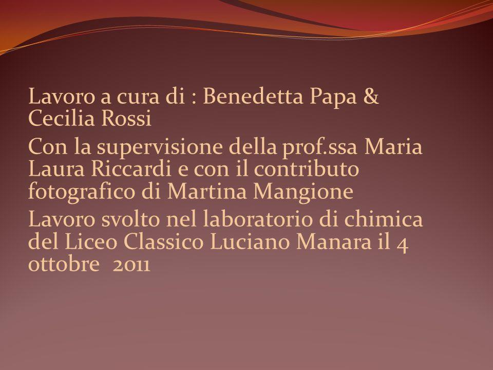 Lavoro a cura di : Benedetta Papa & Cecilia Rossi