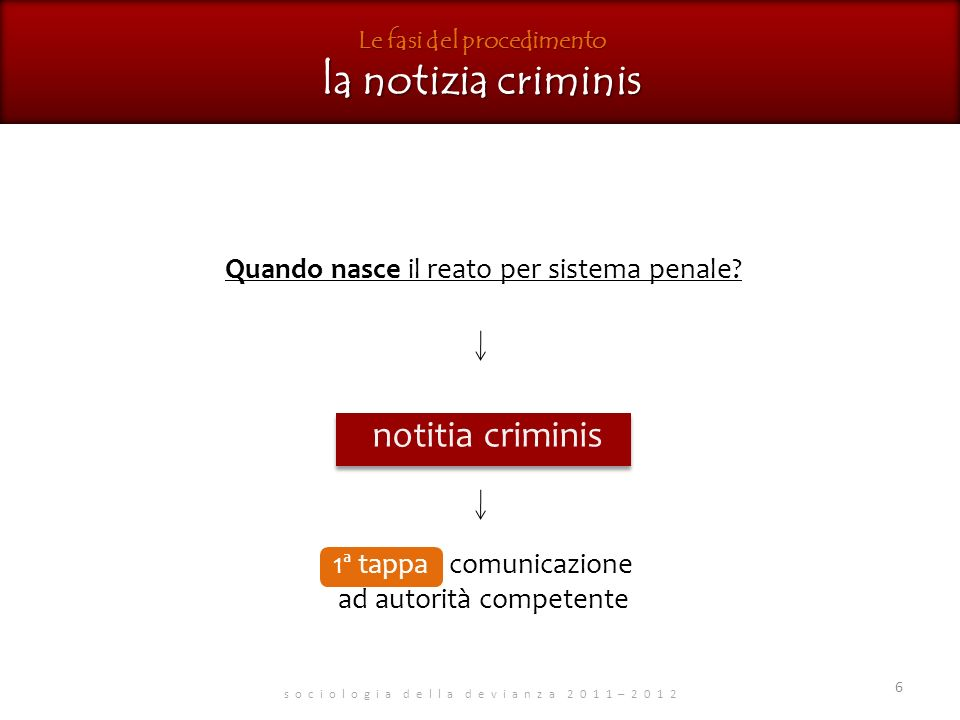 Le fasi del procedimento la notizia criminis
