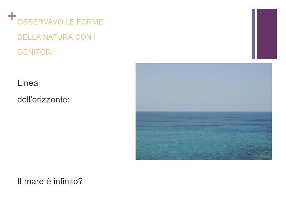 Linea dell'orizzonte: Il mare è infinito OSSERVAVO LE FORME