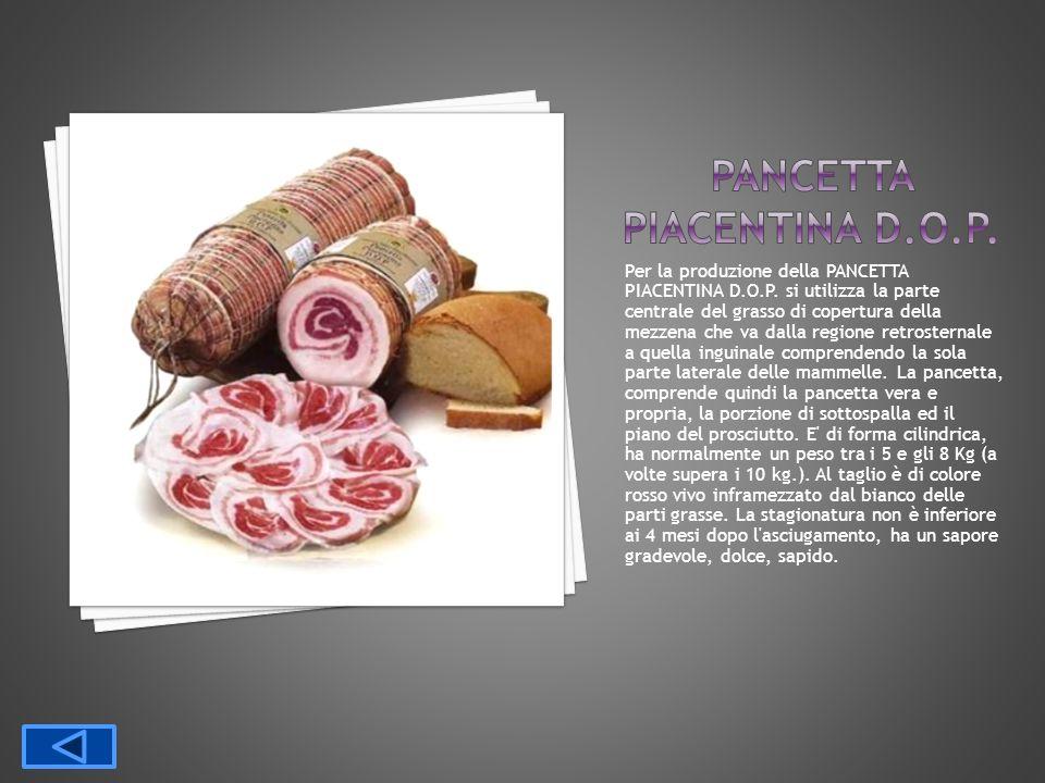 PANCETTA PIACENTINA D.O.P.