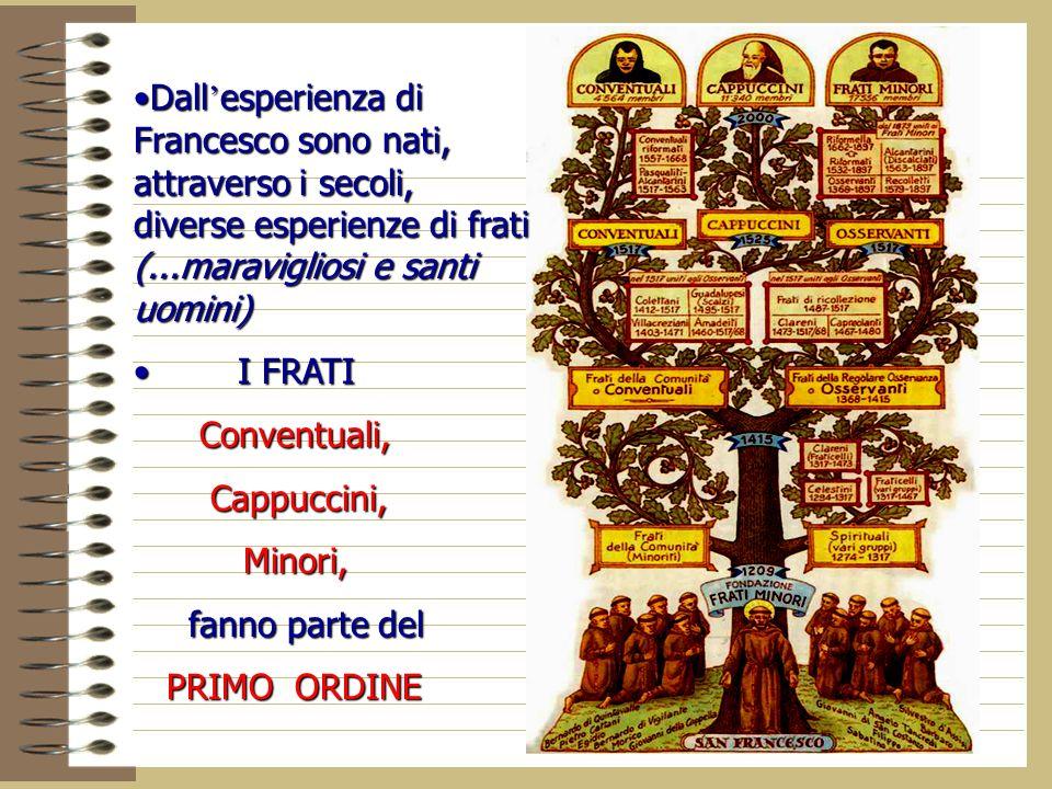 Dall'esperienza di Francesco sono nati, attraverso i secoli, diverse esperienze di frati (...maravigliosi e santi uomini)