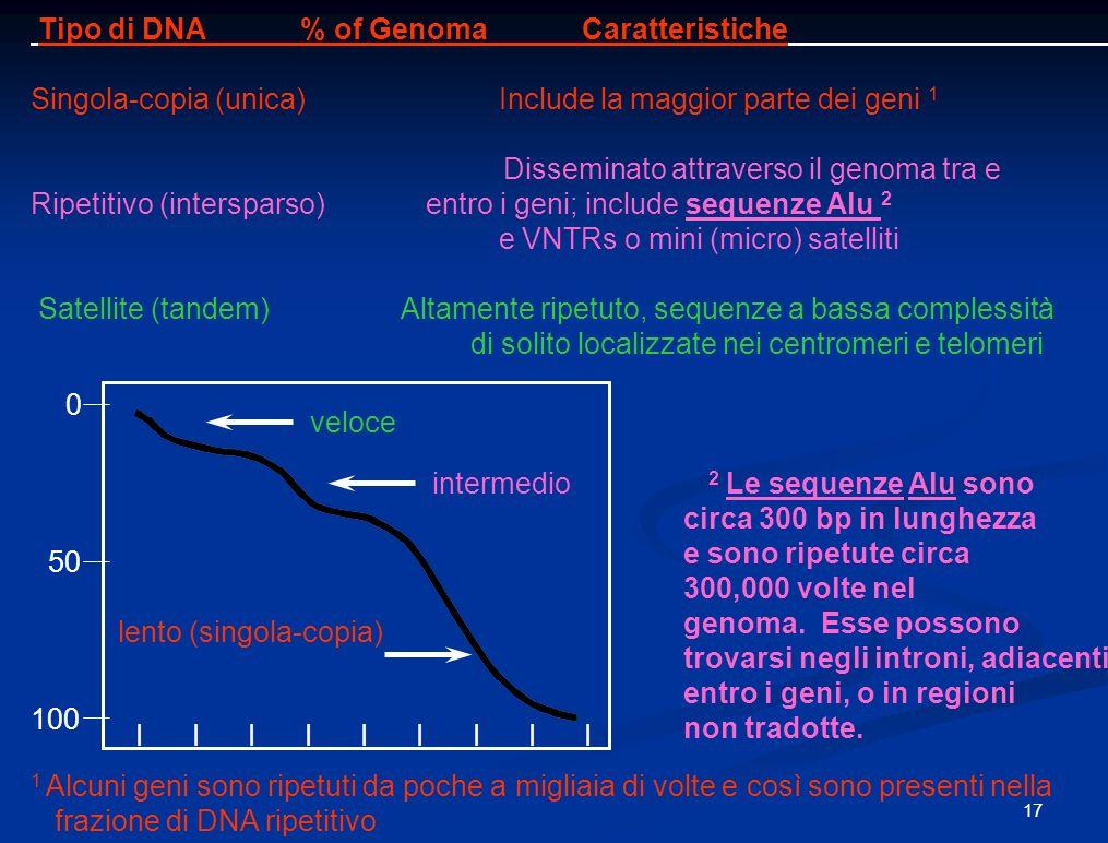 Tipo di DNA % of Genoma Caratteristiche
