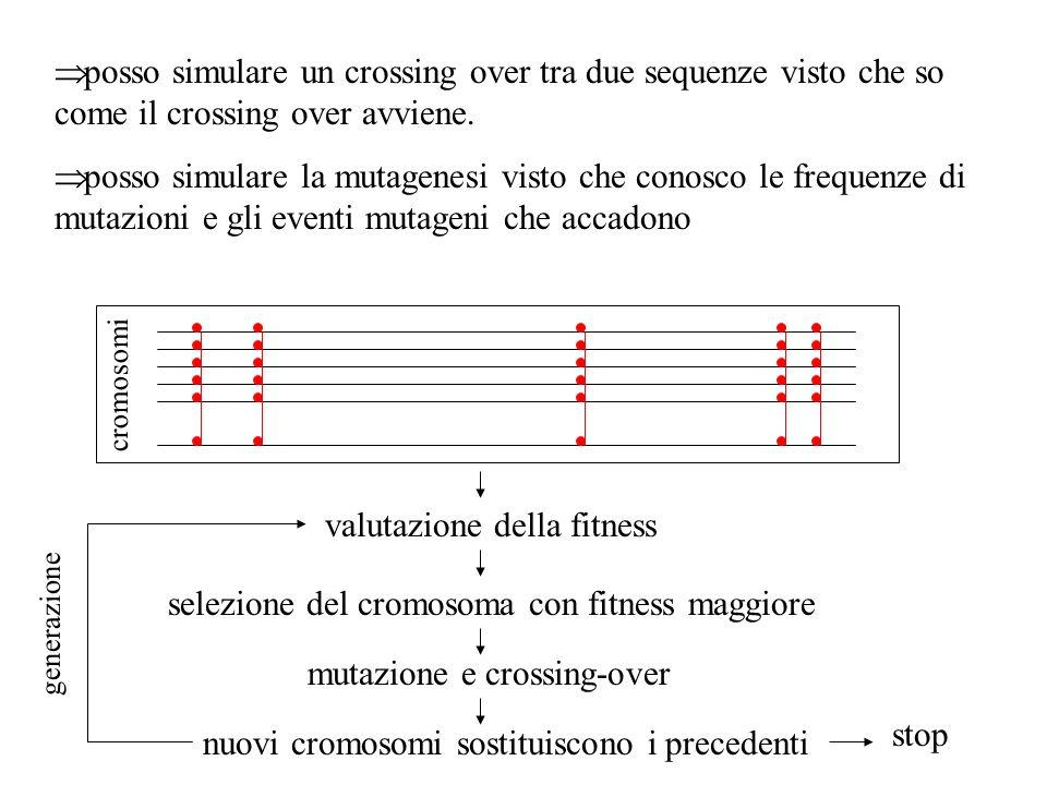 valutazione della fitness