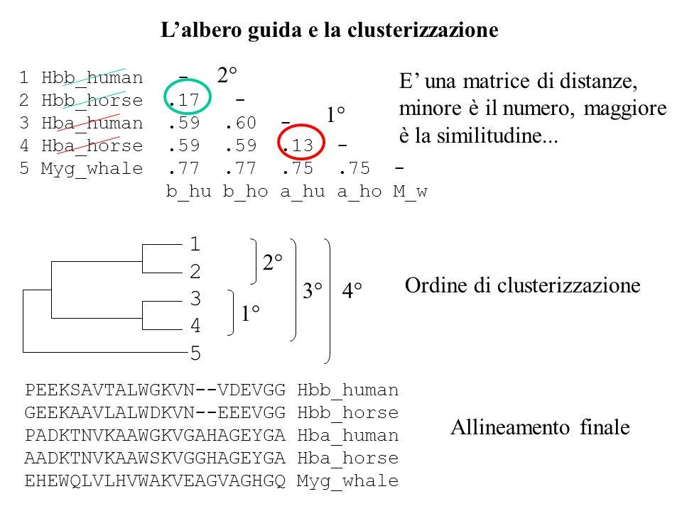L'albero guida e la clusterizzazione