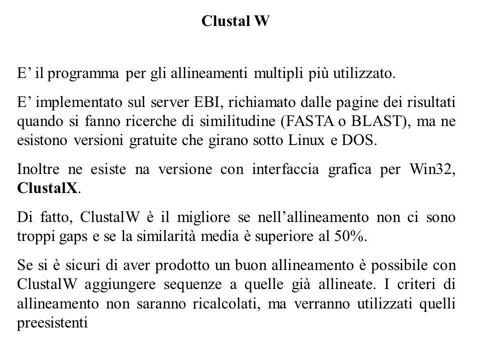 Clustal W E' il programma per gli allineamenti multipli più utilizzato.