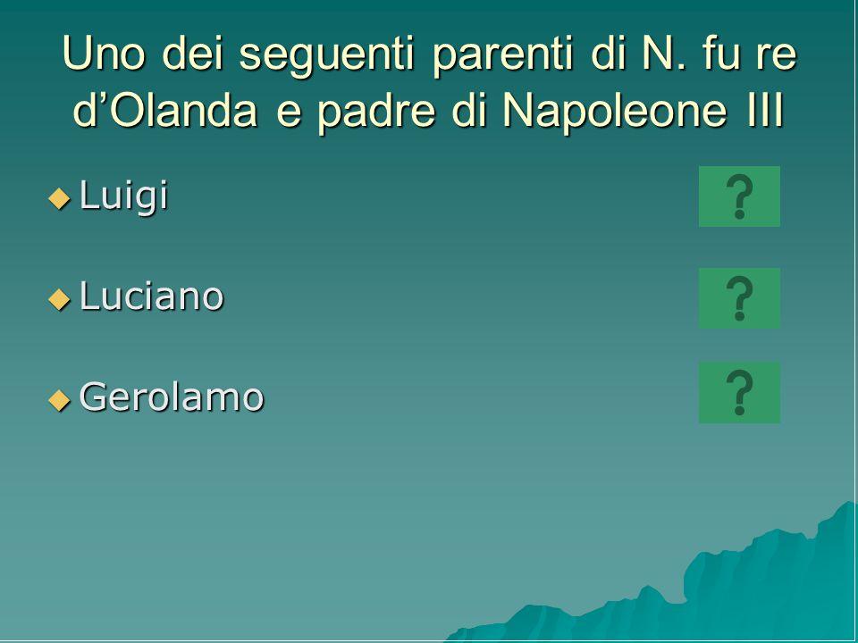 Uno dei seguenti parenti di N. fu re d'Olanda e padre di Napoleone III
