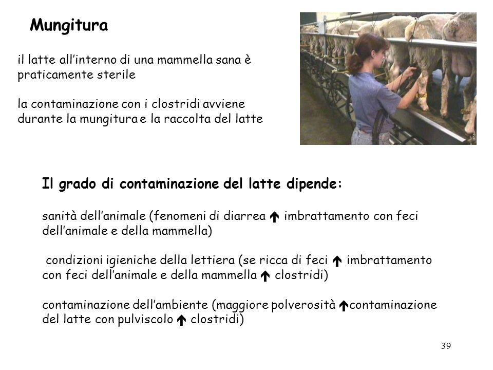 Mungitura Il grado di contaminazione del latte dipende: