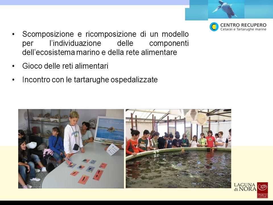 Scomposizione e ricomposizione di un modello per l'individuazione delle componenti dell'ecosistema marino e della rete alimentare