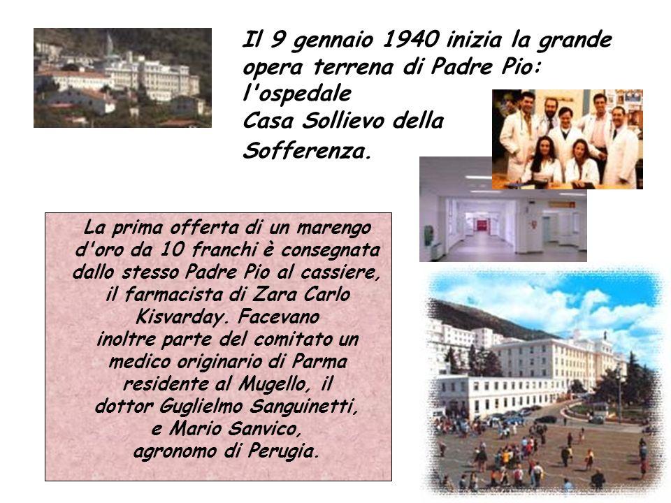 dottor Guglielmo Sanguinetti,