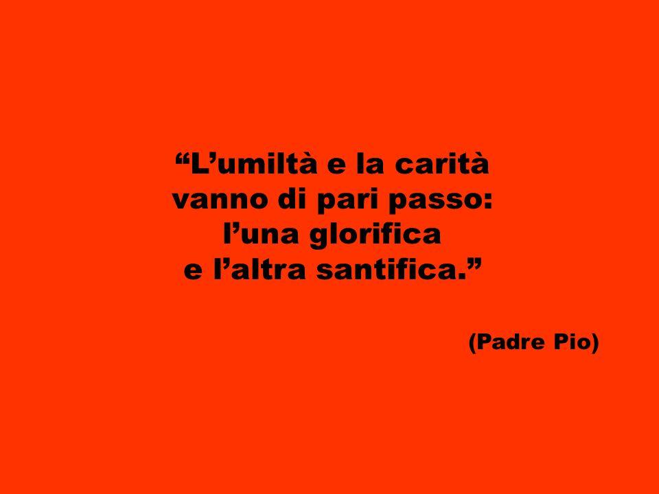 L'umiltà e la carità vanno di pari passo: l'una glorifica e l'altra santifica. (Padre Pio)