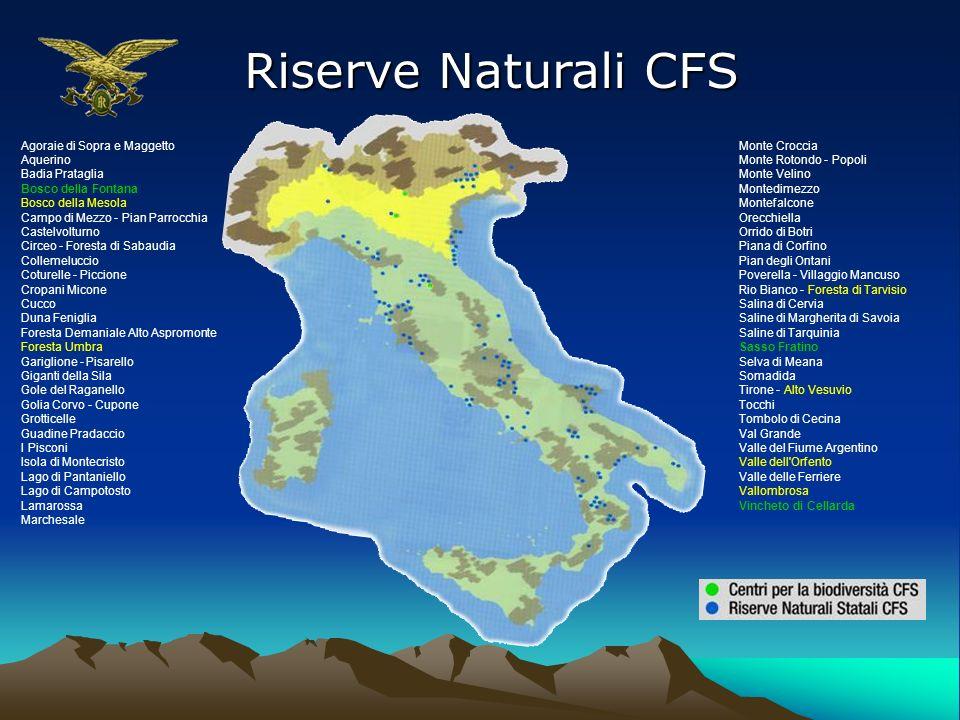 Riserve Naturali CFS Agoraie di Sopra e Maggetto Aquerino
