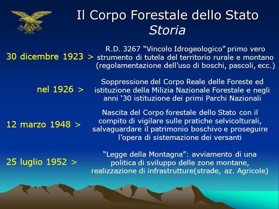 Il Corpo Forestale dello Stato