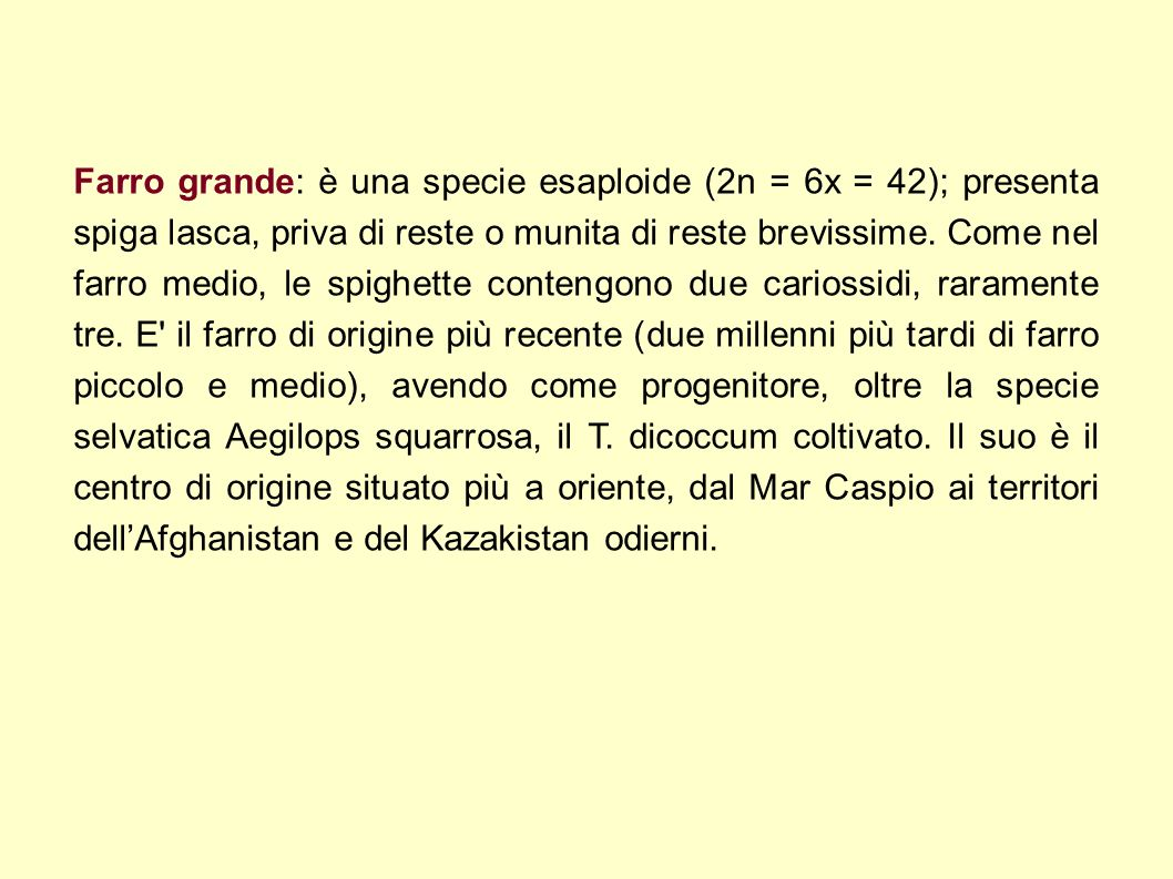 Farro grande: è una specie esaploide (2n = 6x = 42); presenta spiga lasca, priva di reste o munita di reste brevissime.