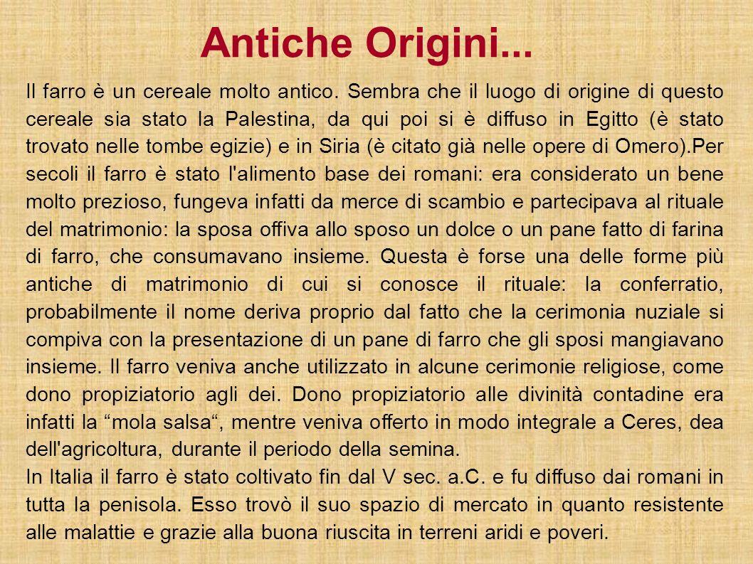 Antiche Origini...