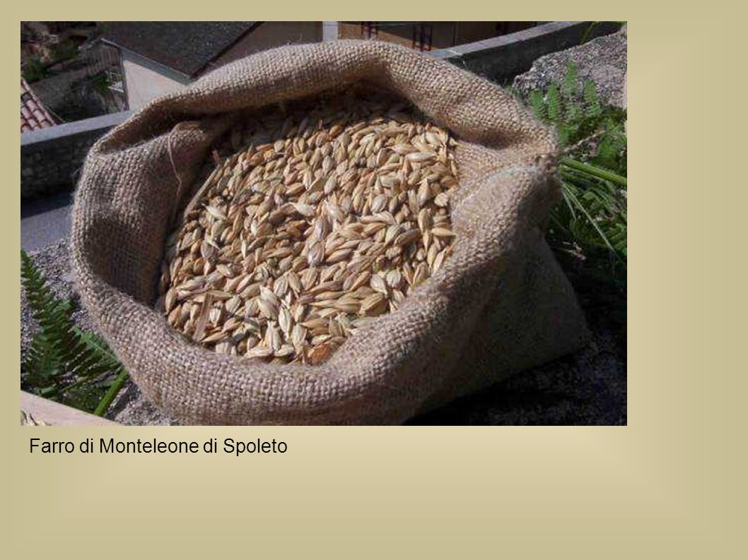 Farro di Monteleone di Spoleto
