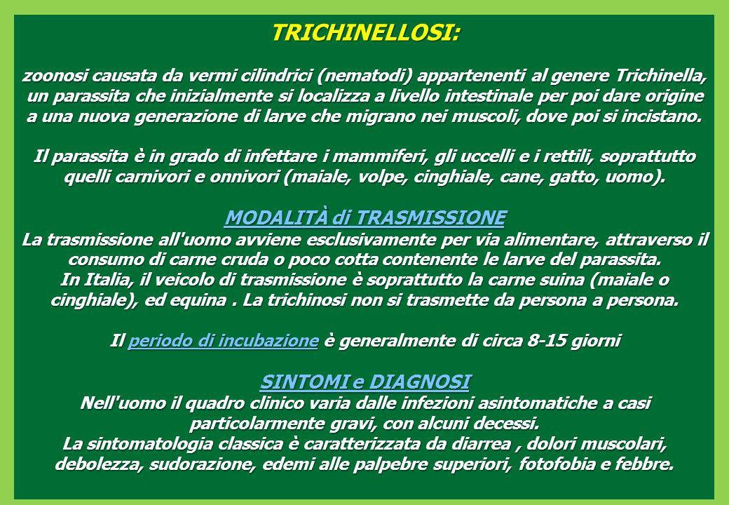 TRICHINELLOSI: