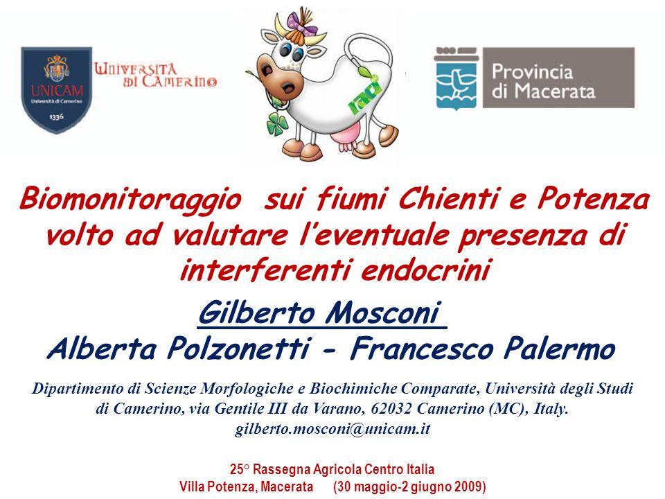 Alberta Polzonetti - Francesco Palermo